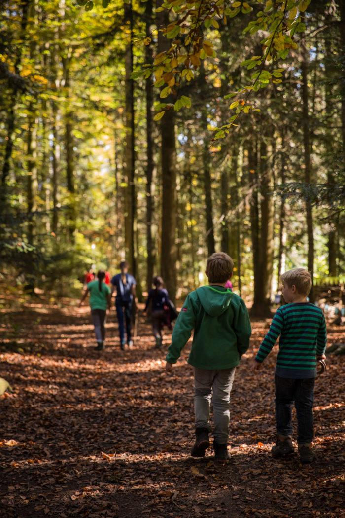 2017-10-15_Herbstlager Wolfsstufe_345